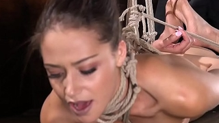 Hot ass beauty in hogtie pussy toyed